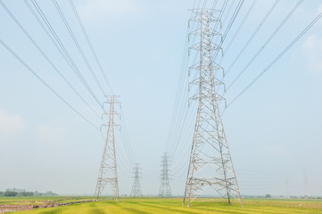 High Voltage Tower and rice field.