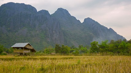 Wood watch's house on the empty rice field. Laos