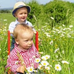 Zwei Jungs in Blumenwiese