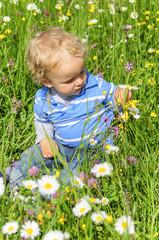 kleiner Junge endeckt die Natur