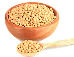 Raw soybeans in bowl isolated on white