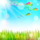 Summer sunny landscape with green grass and colorful kites
