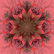 Beautiful fractal flower in red and gray. Computer generated gra