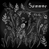 floral set on chalkboard