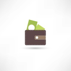 purse and green money
