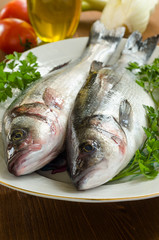 Spigole fresche, fresh european bass