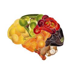 Gesunde Ernährung ist gut für das Gehirn