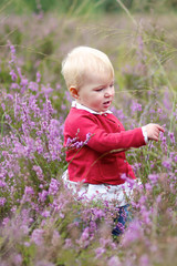 little baby girl playing with purple flowers in a heath