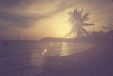 Palm tree and  seascape at sunset with vintage filter effect