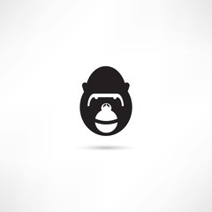 Gorilla in eyeglasses