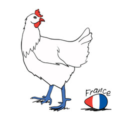 France Country Flag