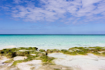 boundless expanse of ocean island of Socotra
