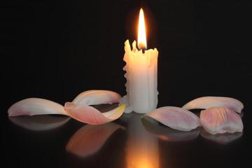 Kerze, Blütenblätter