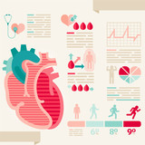 Human heart/info-graphic of Healthcare