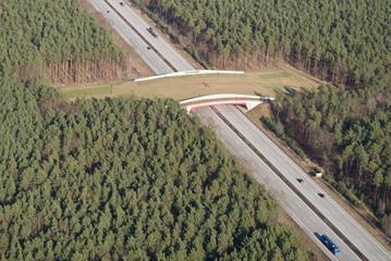 Wildbrücke (Grünbrücke) über Autobahn