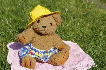 Teddybär im Urlaub