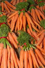Fresh harvest of carrots in bundles.