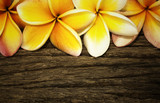 Frangipani flower on the wooden background