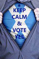 Scottish Businessman votes yes