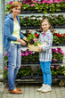 Planting, garden flowers - family shopping plants