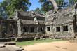 Ta prohm ruins, Angkor Wat, Cambodia