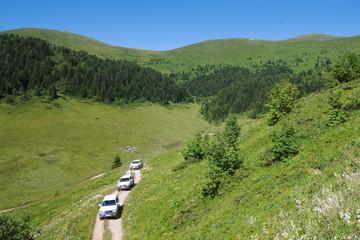 "Off Road Cars Crossing ""biogradska Gora"" National Park, Monteneg"