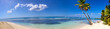 Panoramic view of tropical sand beach with palms - 62143252