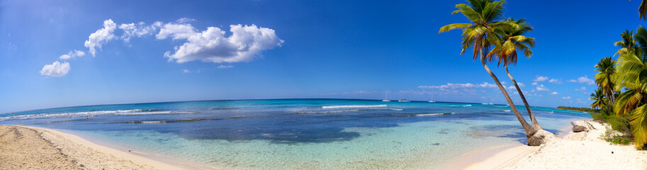 Panoramic view of tropical sand beach with palms