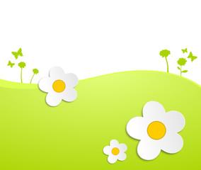 Blumenwiese Gänseblümchen