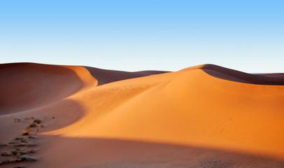 Sand diunes