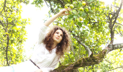 Any Jam (girl lying on a branch breaks and apple)