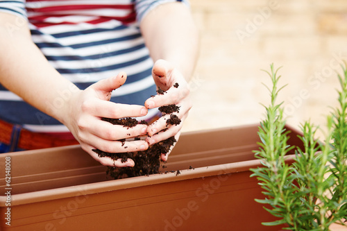 Hands pouring soil on a pot
