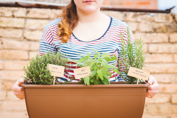 Young woman holding pot of aromatic herbs