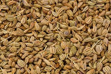 Ajwain Seeds (Trachyspermum ammi)
