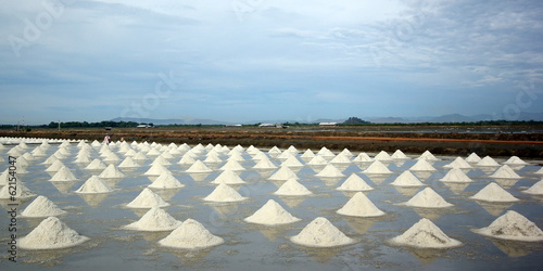 sea salt in salt farm