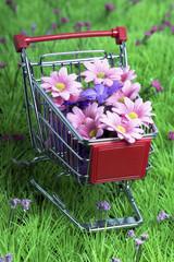 Blumenwagen 1