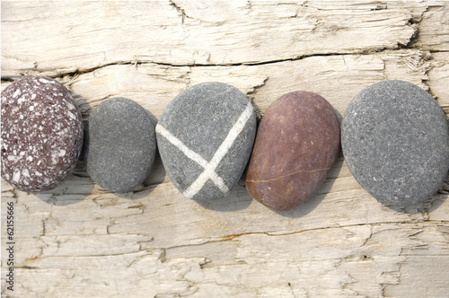 Set of different rocks on driftwood
