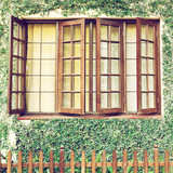 Wooden window with green ivy