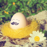 Retro style Easter egg with mustache