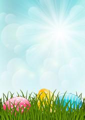 Easter meadow