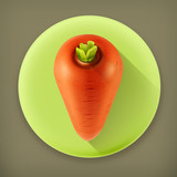 Carrots long shadow vector icon