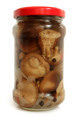 Mushrooms marinaded in glass jar