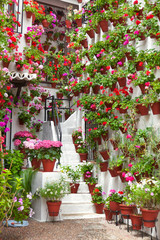Flowerpots and Flowers on a white wall,  Old European Town