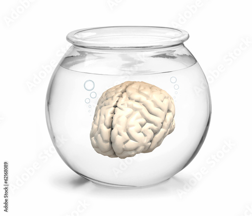 fishbowl with brain inside