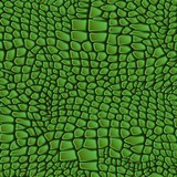 the background of the skin of reptiles