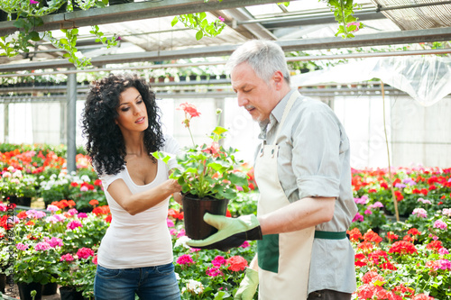 Florist selling flowers to a customer