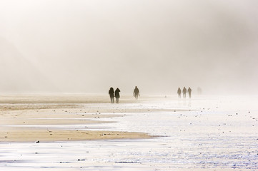 people walking on beach