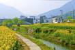 Rural landscape and houses in Wuyuan, China.