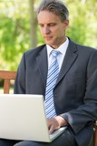 Mature businessman using laptop