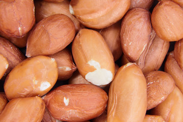 Groundnuts close up